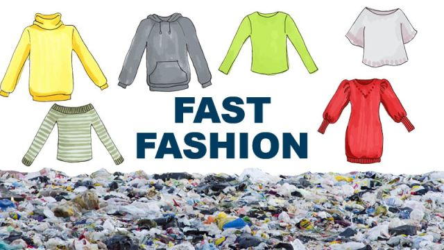 Fast Fashion Graphic